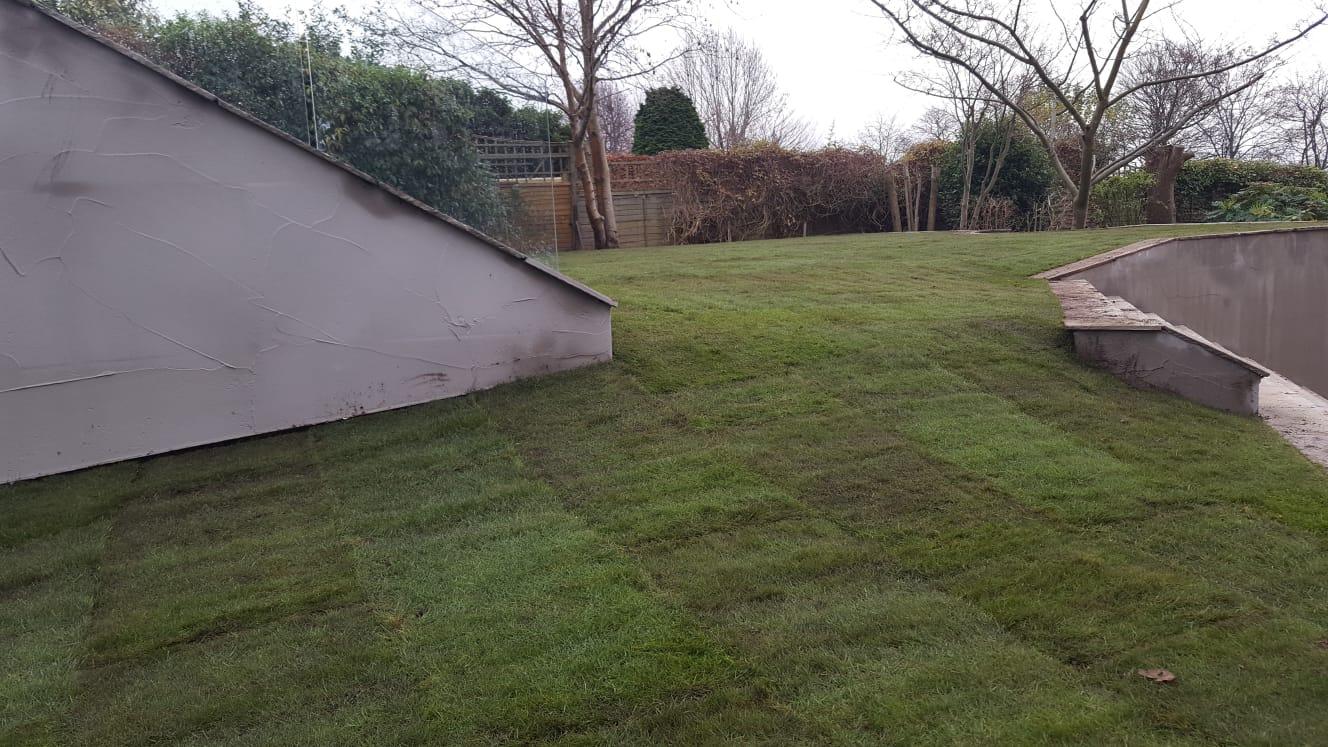 Lawn_Turfing