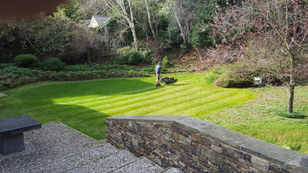 Grass_Cutting_Sheffield